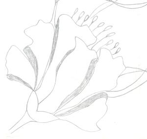 Design 10 - Copy