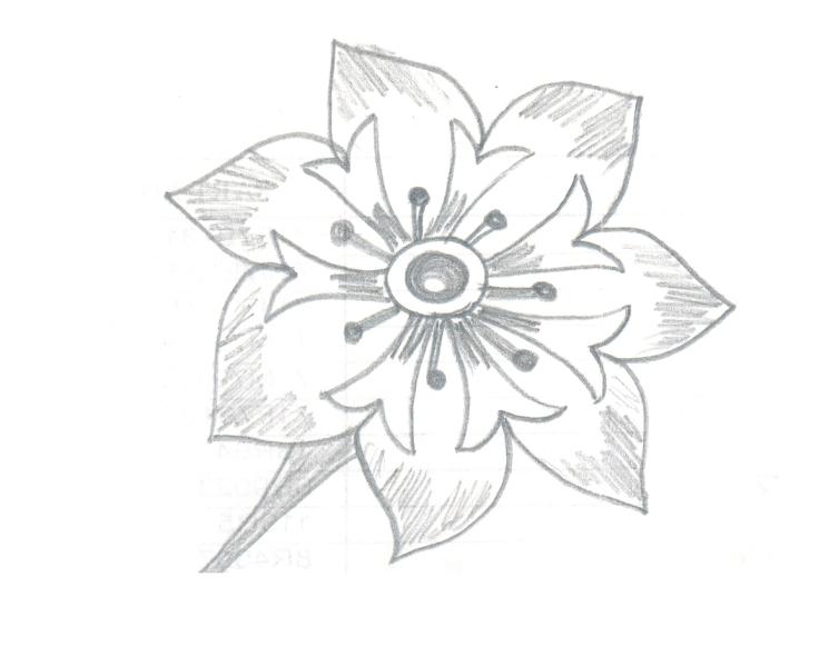 Design 4.1